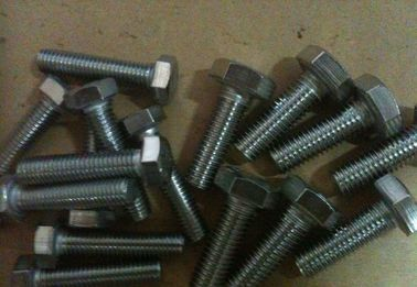 China 4.8 Grade Steel Hex Bolt , Full Thread Galvanized Structural 	Hex Head Bolt distributor